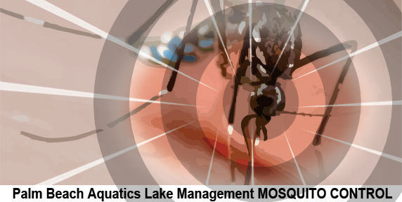Mosquito Control West Palm Beach Florida offering a completely green approach to mosquito,